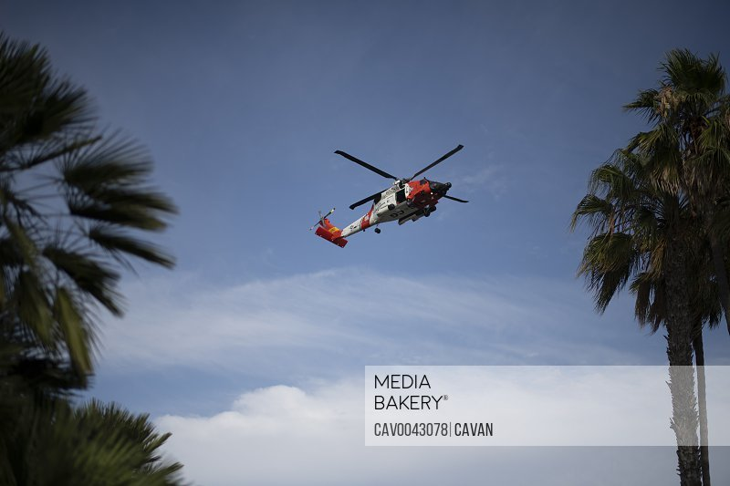Coast Guard Helicopter flying ablove palm trees on a sunny day<br><br><span style='color: red'>Editorial Use Only.</span><br><br>