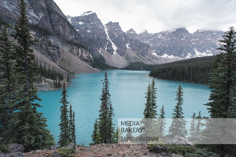 View of Moraine Lake and surrounding mountains through evergreen trees