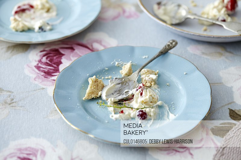 Empty plate with meringue crumbs