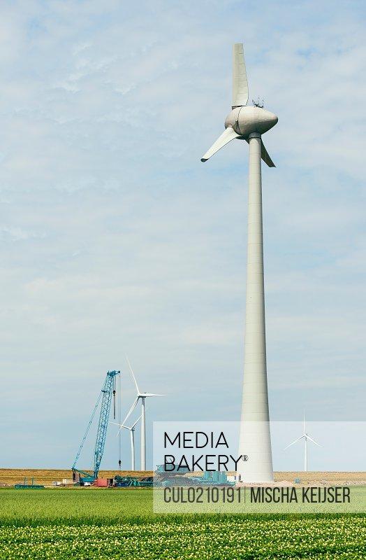 Wind turbines on wind farm, Espel, Flevopolder, Netherlands