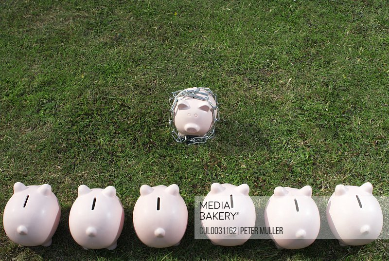 piggy bank in a line facing one