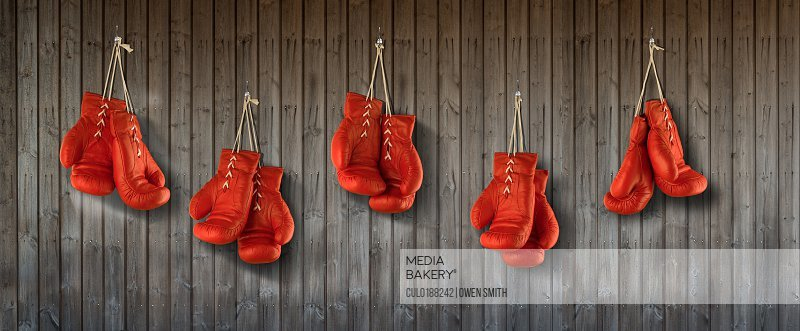Row of red boxing gloves hanging from wood panelled wall