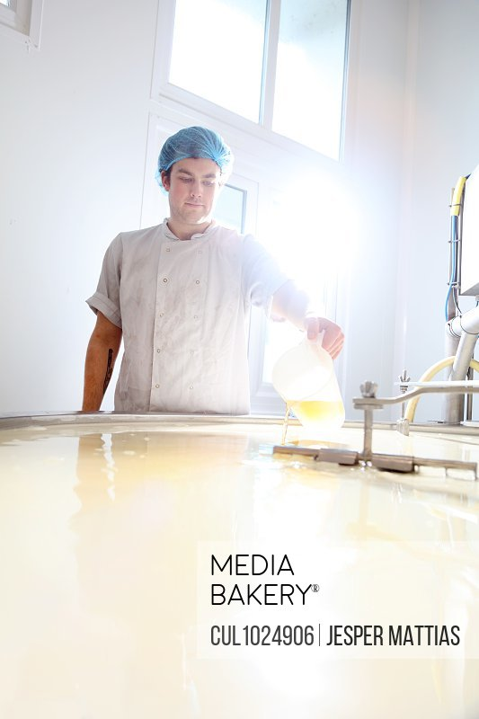 Cheese maker adding rennet to curdle cheese in vat