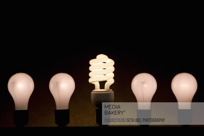 Fluorescent and incandescent light bulbs