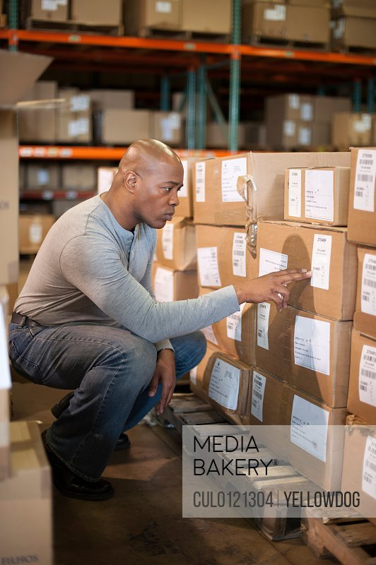 Male warehouse worker reading labels on cardboard box/n