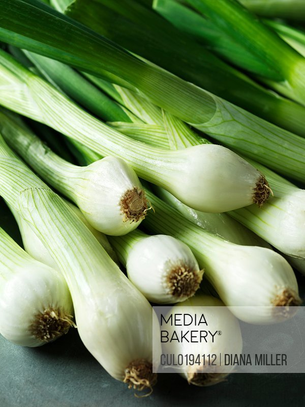 Spring onions close-up