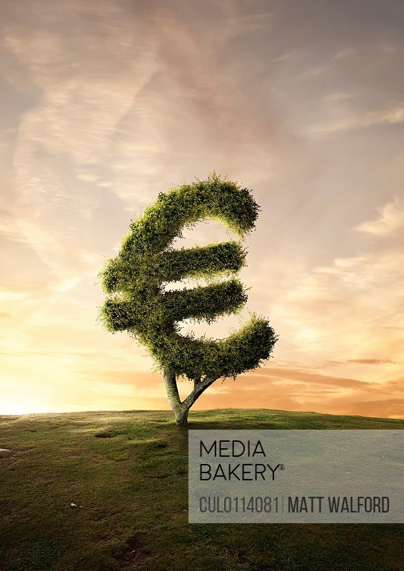 Topiary tree financial symbol Euro sign