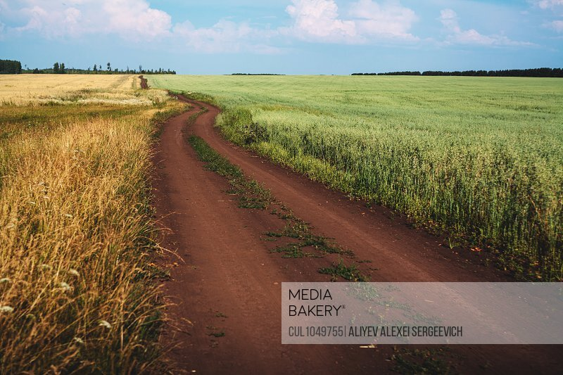 Dirt track through fields