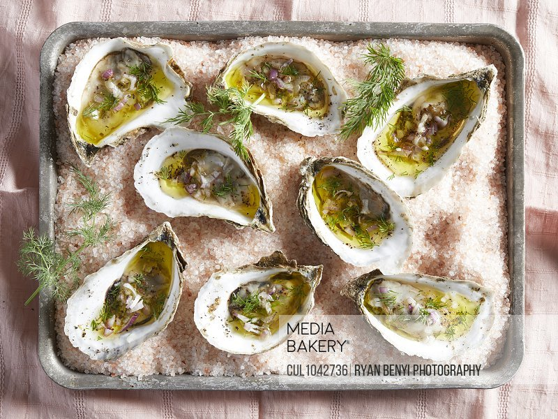 Overhead view of oysters in their shells with dill and dressing on a tray of pink rock salt.