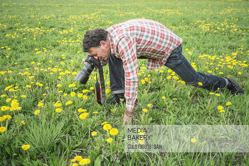 Photographer focusing closely on object in grass