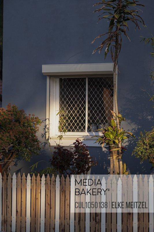 Plants outside house in neighbourhood, Melbourne, Australia