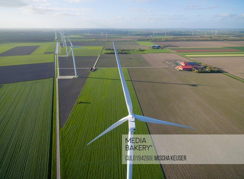 Wind turbines on farmland Zeewolde Flevoland Netherlands