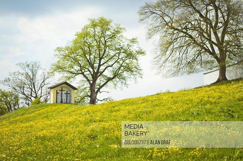 House built on grassy hilltop