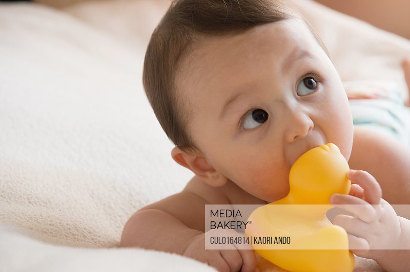 Mediabakery - Photo by Cultura Images - Baby boy chewing on bath toy