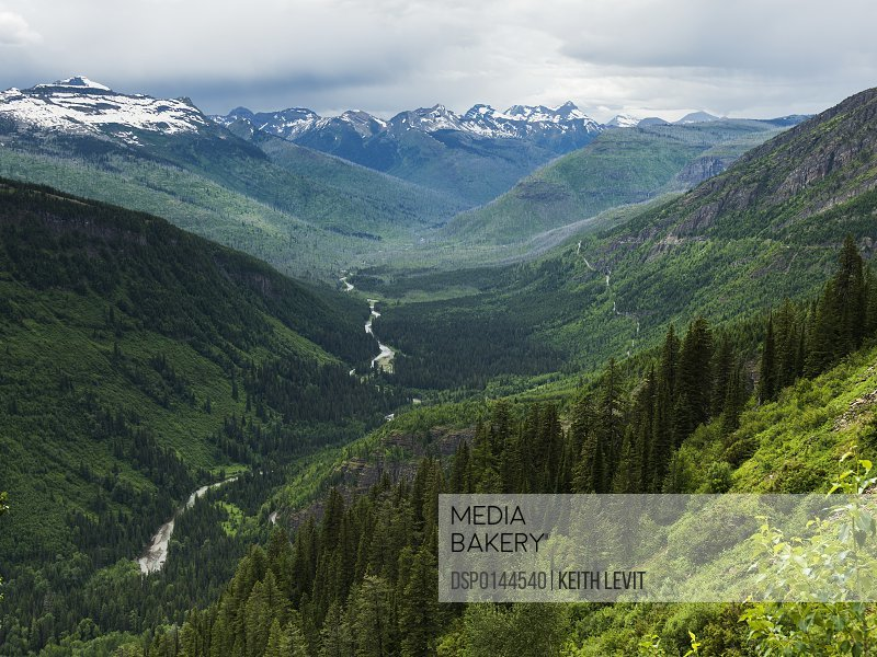 Extreme terrain of rugged mountains and green forested slopes, Glacier National Park; Montana, United States of America