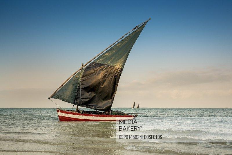Dhow in Vilanculos beach, Bazaruto Archipelago; Mozambique