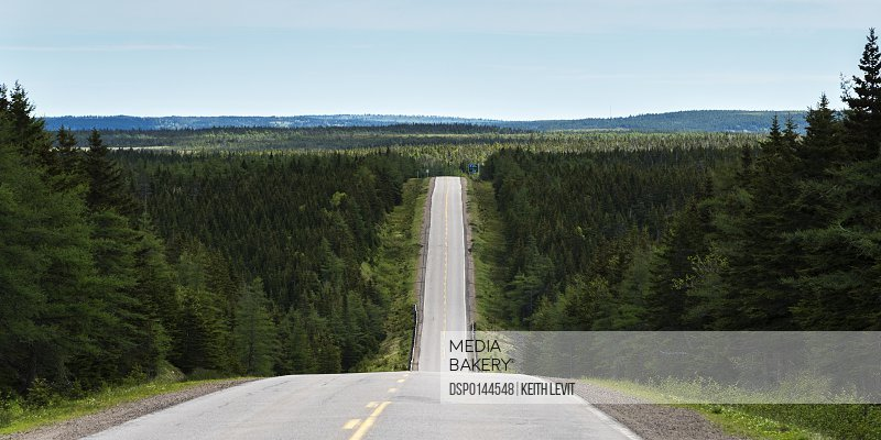 A road dips down into a valley and comes back up again and leads into the distance; Pleasant Bay, Nova Scotia, Canada