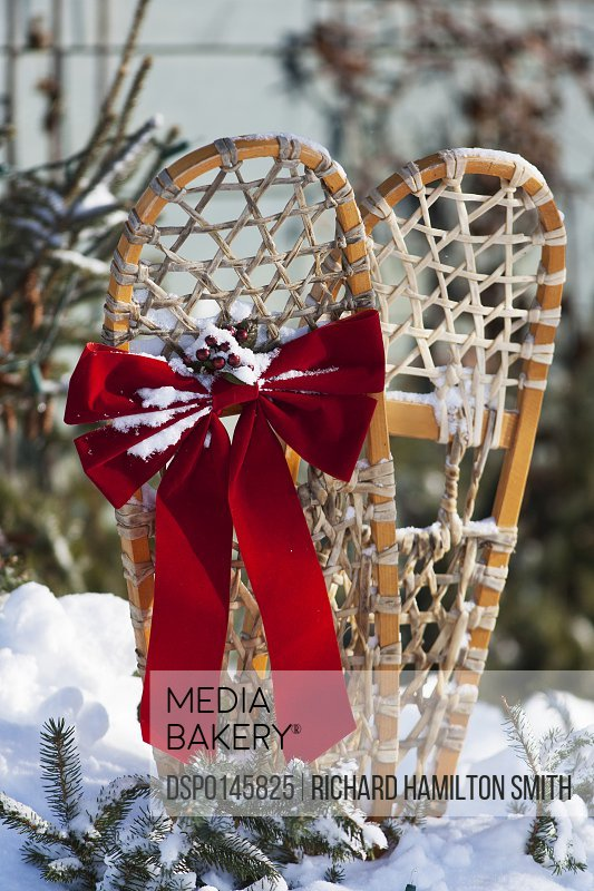 Holiday decoration on old pair of snowshoes, Christmas season; Minnesota, United States of America