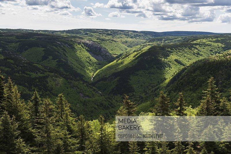 Forests and green foliage covering the mountainous landscape of Cape Breton Island; Pleasant Bay, Nova Scotia, Canada