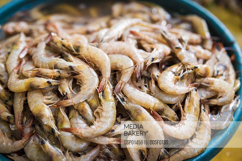 Fresh prawns for sale at Maputo's Central Market; Maputo, Mozambique