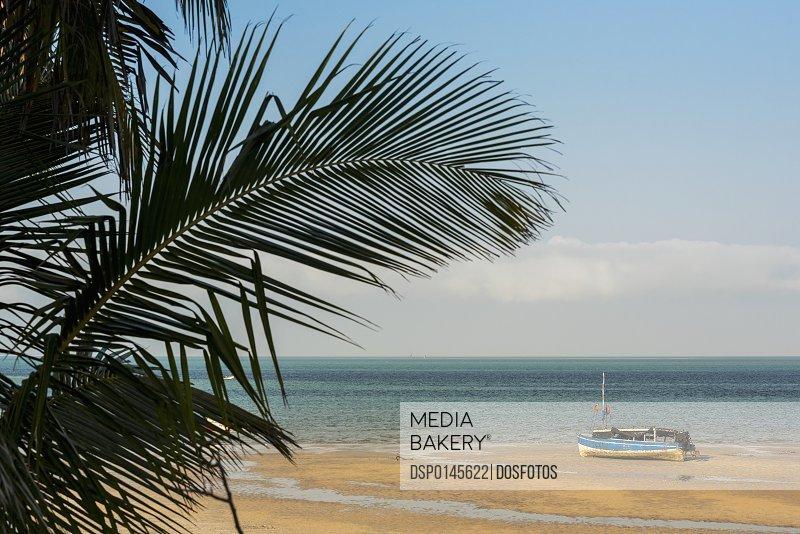 Dhow in low tide, Vilanculos beach, Bazaruto Archipelago; Mozambique