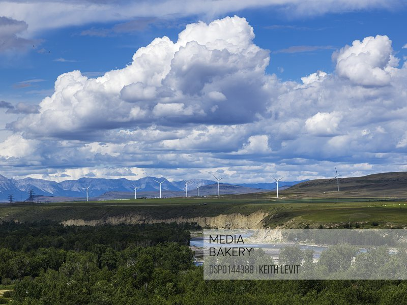 Wind turbines in a field with the Canadian Rockies in the distance; Brocket, Alberta, Canada