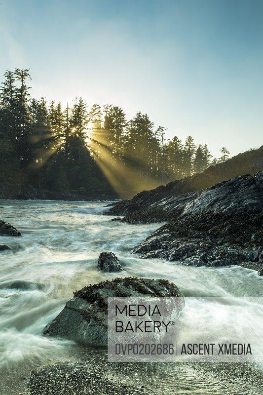 Sun rises above tranquil ocean shore