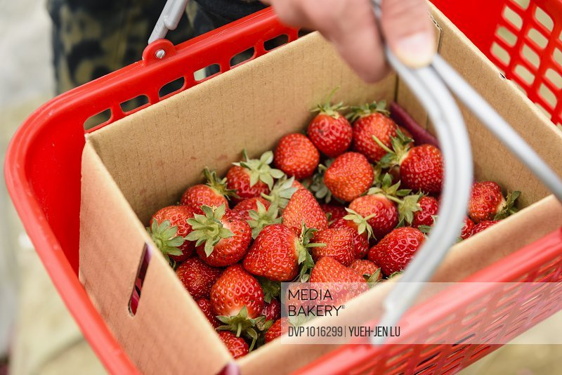 Red strawberries in box in red basket