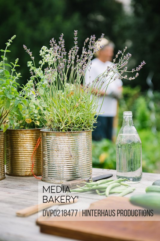 Herbs and vegetable on a vintage garden table