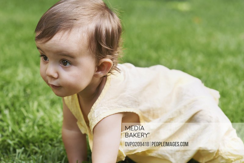 A cute little baby girl crawling outside on the lawn
