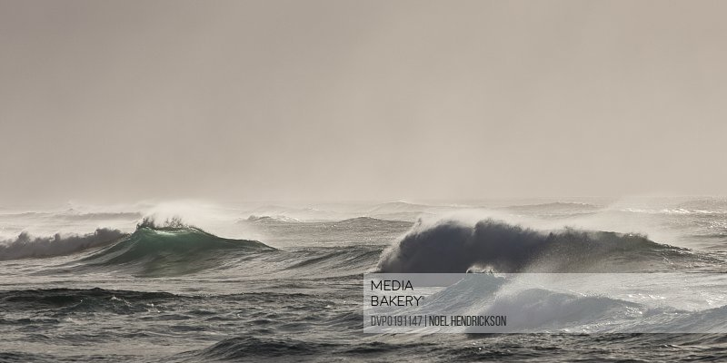 Large ocean waves breaking at sea