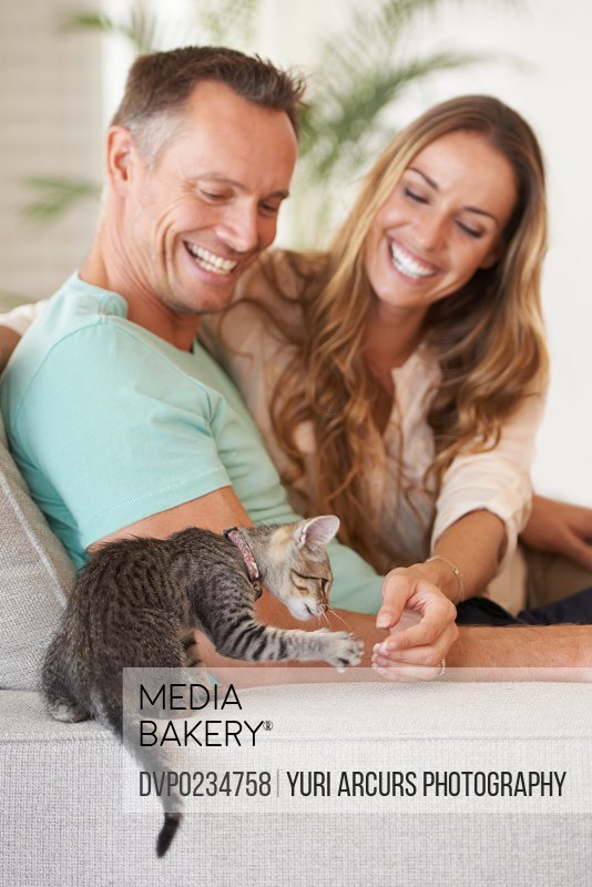 A mature couple playing with their kitten at home