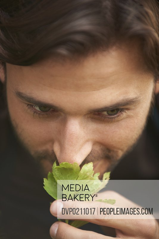 A handsome bearded man smelling fresh herbs