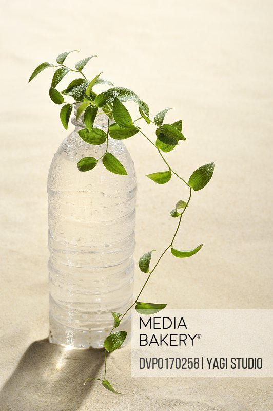 The PET bottle which contains water on the sand a