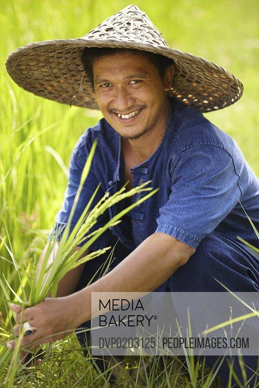 Portrait of a worker in the rice fields