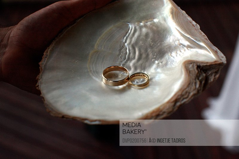 Pearl shell with 2 wedding rings in it