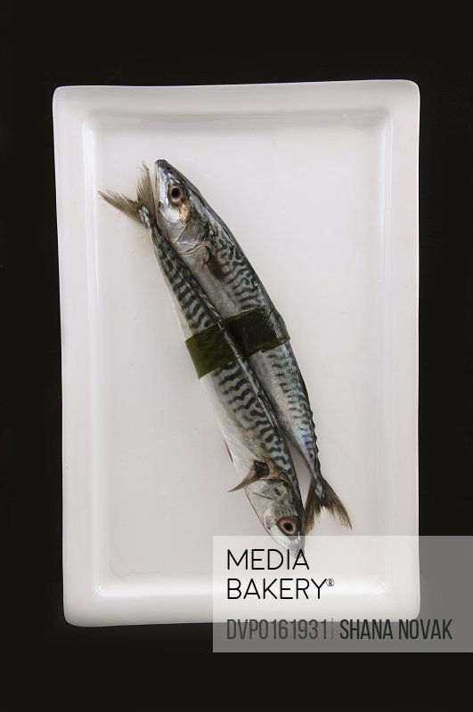 Mackerel Wrapped in Seaweed