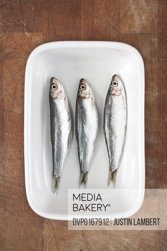 THREE SPRATS IN A DISH READY TO BE COOKED