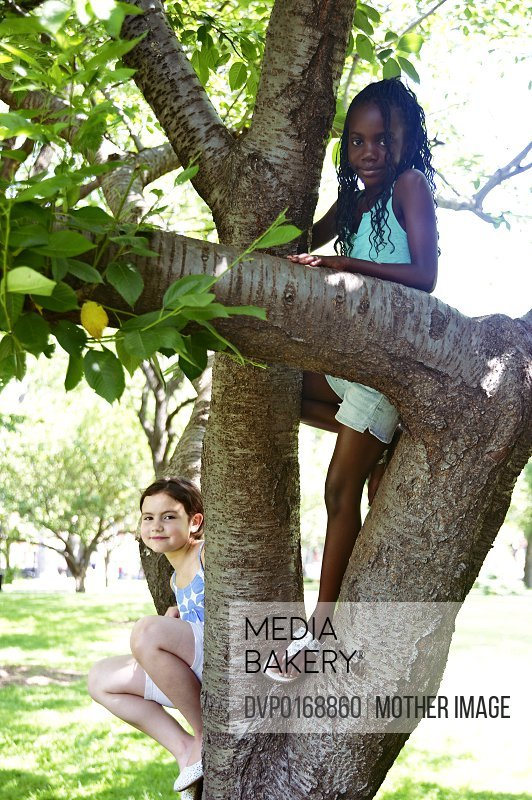 Best friends playing on a tree in the park one girl is black one girl is white