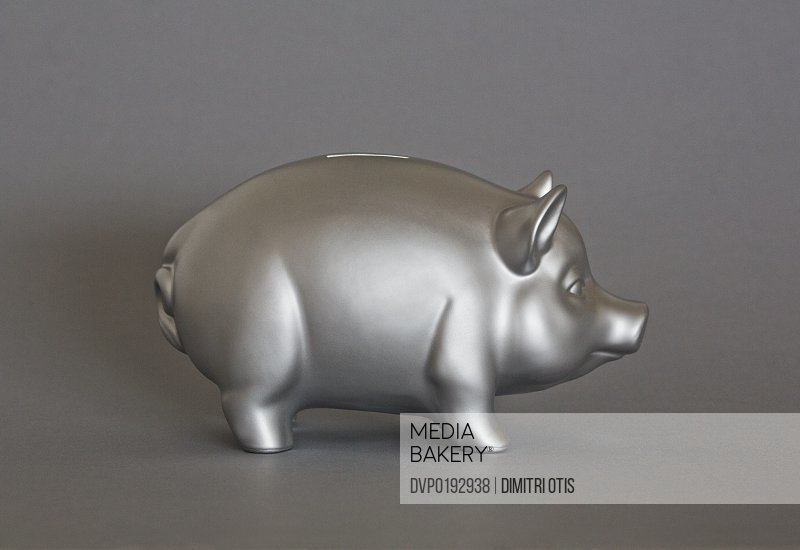 Profile of metal silver piggy bank