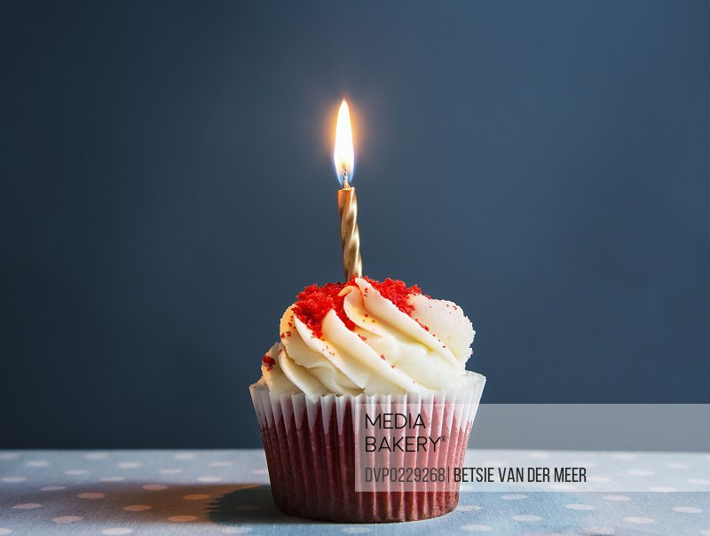 Still life of cupcake with one candle