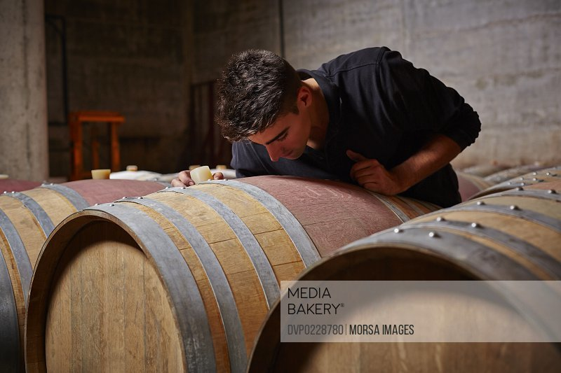 Wine expert checking the content of a barrel