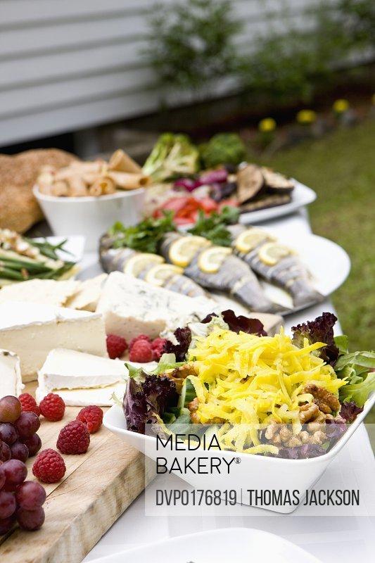 Hispanic outdoor garden party upstate