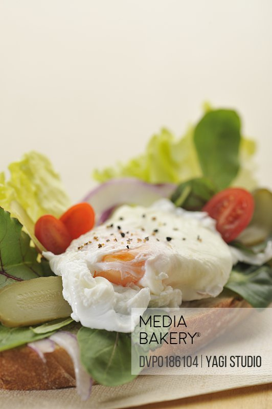 soft boiled egg and vegetable open sandwich