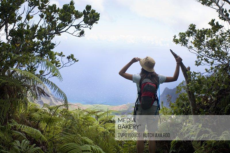 Hiking the Phea Trail in Waimea Canyon and looking down on the Na Palion Kauai Hawaii
