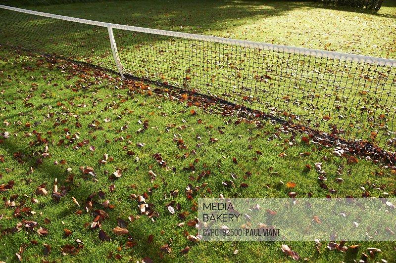 autumn leafs covering grass tennis court