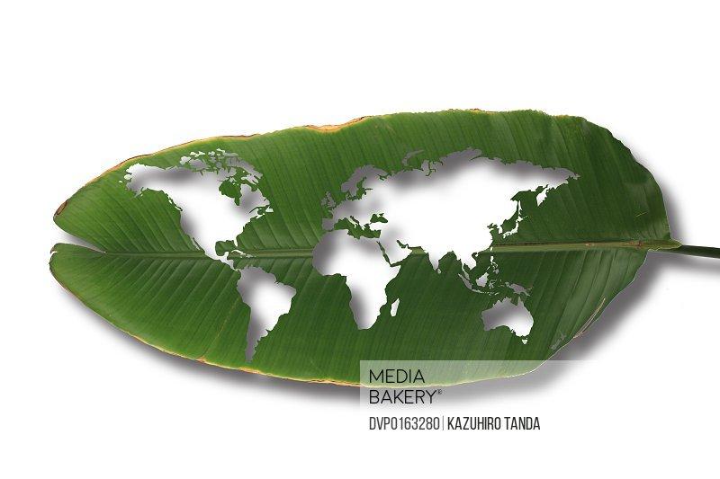 The worm-eaten leaf world map