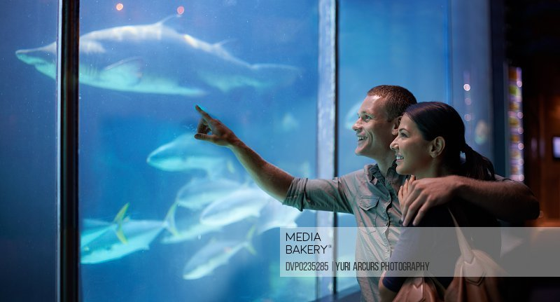 Shot of a young couple looking at the fish in an aquarium
