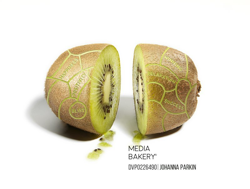 Kiwifruit divided into phrenology brain sections