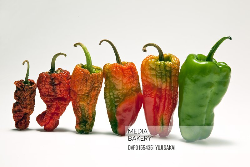 image of green pepper